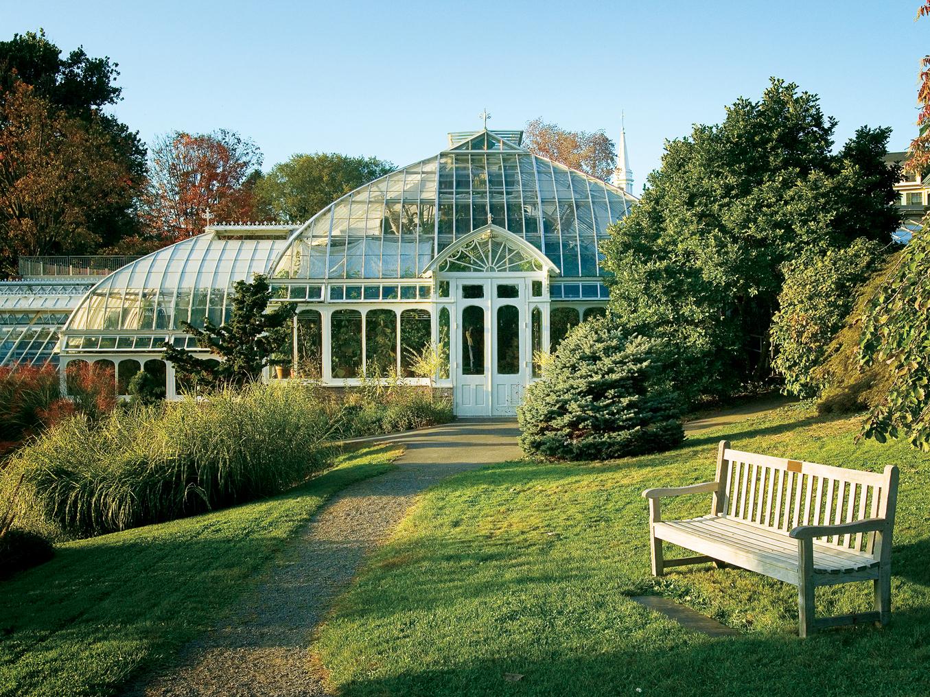 Lyman Conservatory outside view with trees